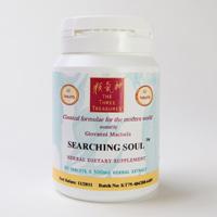searching_soul